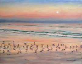 Sandpiper Symphony  11x14 Oil  Available